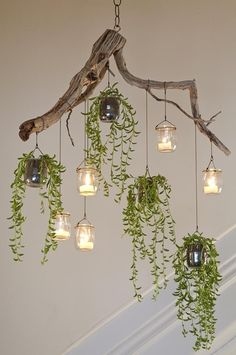 indoor hanging plants ideas to decorate your home 4 ~ mantulgan.me indoor hanging plants ideas to decorate your home 4 ~ mantulgan. Driftwood Chandelier, Diy Chandelier, Christmas Chandelier, Outdoor Chandelier, Modern Chandelier, Outdoor Lighting, Garden Room Lighting, Hula Hoop Chandelier, Decorative Chandelier
