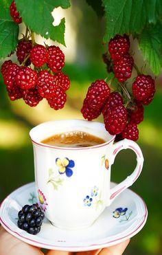 Coffee Vs Tea, Coffee Is Life, I Love Coffee, Coffee Cafe, Coffee Break, Breakfast Tea, Cafe Food, Tea Time, Tea Party