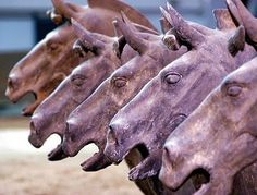Ancient Tides: Emperor's Horse Statues Mostly Geldings