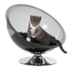 If Dr. Evil's cat had a nest, it'd be this one.
