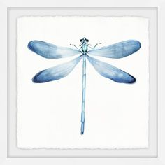 Give your wall a full and bold display with our Pastel Blue Dragonfly Framed Art Print. You'll love the watercolor tones and unique design of this piece. Framed Wall Art, Framed Art Prints, Painting Prints, Painting Frames, Watercolor Paintings, Dragonfly Wall Art, Blue Dragonfly, Dragonfly Tattoo, Dragonfly Painting