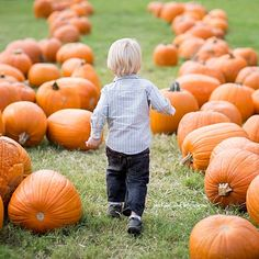 #Halloween is around the corner. Get ready for it. Visit a pumpkin patch with your family.