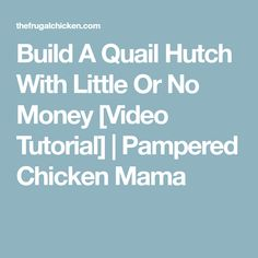Build A Quail Hutch With Little Or No Money [Video Tutorial] | Pampered Chicken Mama
