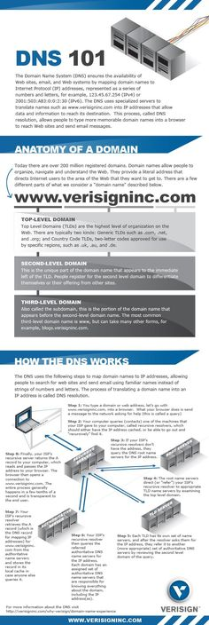 DNS 101 [INFOGRAPHIC]