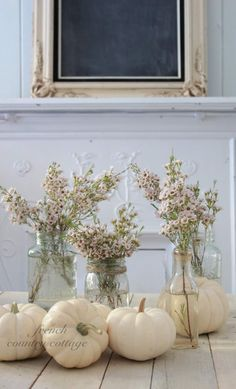 Branches of pink wax flowers in glass jugs with white pumpkins