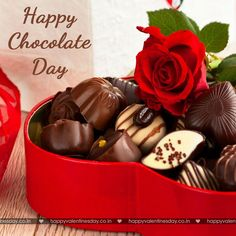 Happy world Chocolate day💝 Make your day a free-range chocolate day. Are you going to enjoy a chocky or Haute Chocolate, Chocolate Bomb, French Chocolate, Best Chocolate, Valentines Day Jokes, Valentine Day Week, Happy Valentines Day Pictures, Happy Chocolate Day Images, Chocolate Pictures