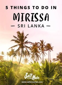 5 things to do in Mirissa, Sri Lanka