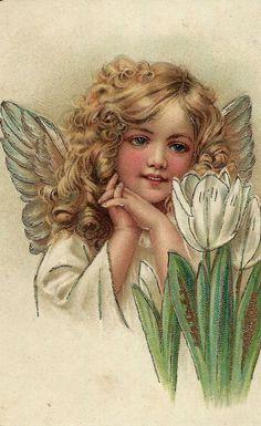 Vintage Angelic delight