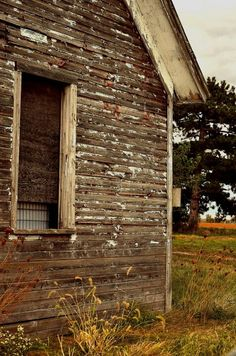 Weathered farm shed