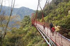 Five reasons why Taiwan should be on your bucket list - Lonely Planet