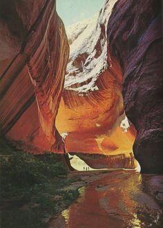 Mesa Verde National Park | Colorado