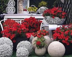 Dekoracje i ozdoby do ogrodu - zdjęcie od gingerrudaziutka