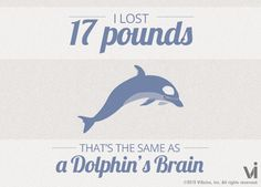 I lost 17 pounds! That is the same as a dolphins brain. #visalus #vilife