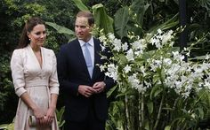 The Duke and Duchess of Cambridge look at an orchid named after Prince William's mother Diana, Princess of Wales during their first engagement in Singapore Photo: Danny Lawson/PA