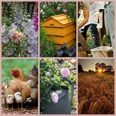 The Great Outdoors. Feel the sun on your face, the wind in your hair, the soil in you. Country Girl Life, Country Girls, Country Living, Country Charm, French Country Style, Beautiful Collage, Beautiful Pictures, Photo Mosaic, Collages