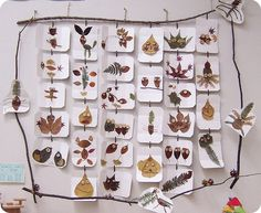 Learn how your children can use fall foliage to create little leafy critters.