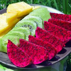 Pitaya, Kiwi, Pineapple - Fruitilicious