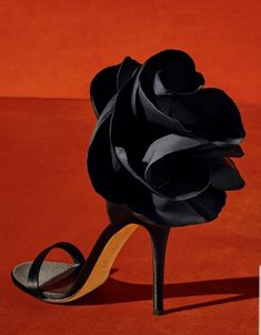 Glamorous black flower heels Giuseppe Zanotti shoes are famous for their supreme quality and artistic silhouette. Sketching each design by hand, he is known for his amazing jeweled heels, luxury sneakers, handbags and even jewelry. Hot Shoes, Crazy Shoes, Me Too Shoes, Women's Shoes, Giuseppe Zanotti Heels, Zanotti Shoes, Giuseppe Zanotti Design, Fashion Heels, Emo Fashion
