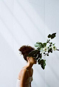 plantas que crecen