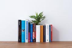 Der Innendesigner Naoki Ono und der Produktdesigner Yuki Yamamoto haben einen Blumenvase in der Form eines Buches entworfen und diese Vase anschließend mit einem Umschlag versehen.