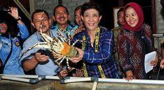 harus membantu pengembangan budidaya lobster dengan mengembangkan budidaya pakan alaminya seperti kerang hijau dan pakan buatannya, kata Wajan, Jakarta, Minggu (8/2/2015). Selama ini, sambung Wajan, para pembudidaya lobster sangat terbebani dengan mahalnya harga pakan dalam membudidayakan lobster. Di mana, para nelayan budidaya harus mengeluarkan dana cukup besar untuk memberi ikan rucah. Kalau pemerintah mengembangkan budidaya pakan alami seperti kerang hijau dan oyster, kita bisa hemat 80…