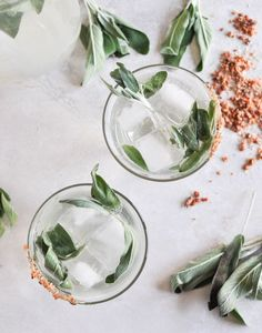 honey sage gin fizz by how sweet it is