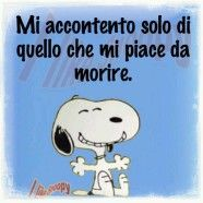 Italian Humor, Good Sentences, Funny Times, Sarcastic Quotes, More Than Words, Vignettes, Charlie Brown, Cartoon, My Love