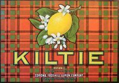 Kiltie Brand - vintage lemon crate label, Riverside County, CA