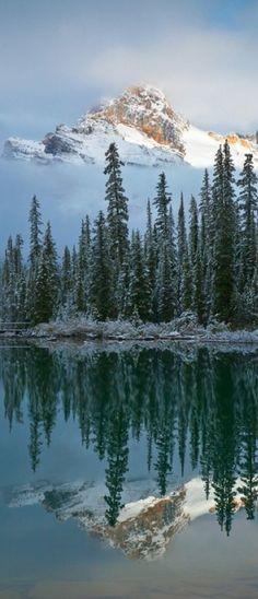 Cathedral Mountain reflected onto Lake O'Hara at Yoho National Park in British Columbia, Canada •