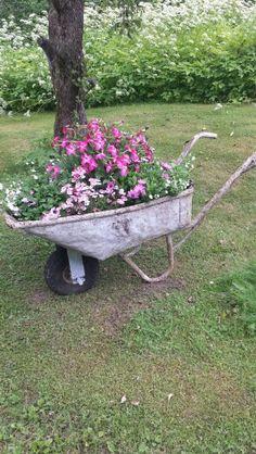 Plantering Outdoor Planters, Flower Planters, Diy Garden Projects, Garden Crafts, Succulents Garden, Planting Flowers, Wheelbarrow Planter, Vertical Garden Diy, Growing Plants