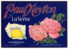 PAUL NEYRON Vintage Lemon Crate Label, wear