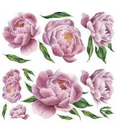 Peony Drawing, Peony Painting, Watercolor Flowers, Painting Trees, Floral Tattoo Design, Flower Tattoo Designs, Peony Flower, Flower Art, Peony Illustration