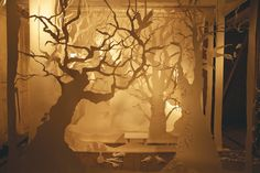 Paper Forest