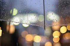 Umbrella, Lights & Rain