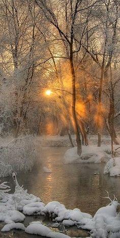 The sun shining thru the trees turns the snow into sparkling diamonds