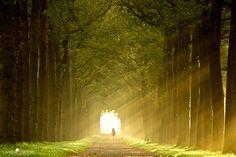Zonnestraaltjes by Lars van de Goor