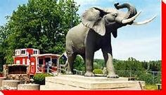 Jumbo the elephant St. Thomas Ontario - road trip with mom. Jumbo The Elephant, Discover Canada, Ontario Travel, Amusement Park Rides, Animal Statues, O Canada, The Great White, Bungee Jumping, St Thomas