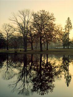 City Park, Walking at Dawn