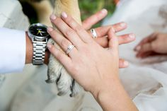 Love our boy Wedding Day, Wedding Rings, Rings For Men, Engagement Rings, Pi Day Wedding, Rings For Engagement, Men Rings, Commitment Rings, Anillo De Compromiso