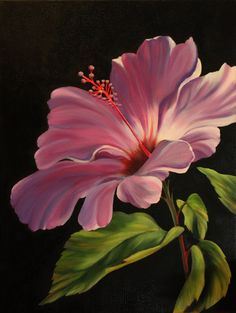 s hibiscus paintings on black in 2019 painting, flowers, Arte Floral, Watercolor Flowers, Watercolor Art, Pictures To Paint, Oeuvre D'art, Painting Inspiration, Flower Art, Painting & Drawing, Art Drawings