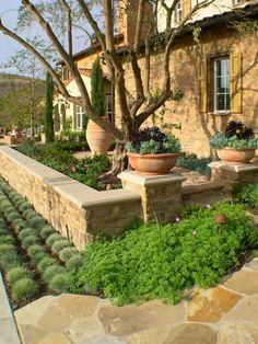 12 Awesome DIY Southwestern Garden Designs You Can Create Yourself To Add Beauty To Your Backyard Succulent Landscaping, Front Yard Landscaping, Front Yard Patio, Landscaping Plants, Landscaping Ideas, Landscape Design, Garden Design, Front Yard Design, Garden Ideas