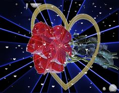 Animated Heart, Gifs, Love Valentines, Beautiful Roses, Love Heart, Animation, Hearts, Jewelry, Bunch Of Red Roses