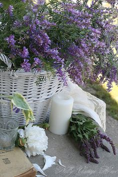 .Lilacs and CANDLES