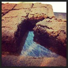 Kate bracks choch/orange brownie
