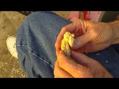 ▶ Carving The 3 Inch Figure Out Of 3/4 Inch Basswood (Conclusion) - YouTube