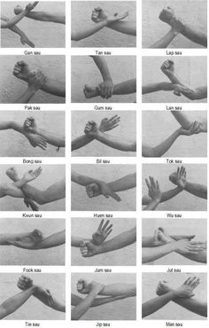 Apparently Wing chun, but I can see a lot of Tensho positions here