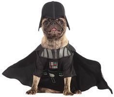 """- Darth Vader Dog Costume XL. - Small=14"""" Chest Size and 11"""" from neck to tail. - Examples of small Dog Breeds: Chihuahua, Pomeranian, Australian Terrier, Toy Poodle, etc. - Medium=17"""" Chest Size and"""