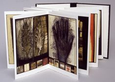 Anne Gilman Limited Edition Artist Books mixed media digital accordion book with hand coloring, printed on Arches cover stock, edition of 10...