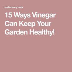 15 Ways Vinegar Can Keep Your Garden Healthy!