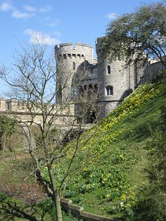 Windsor Castle, another view